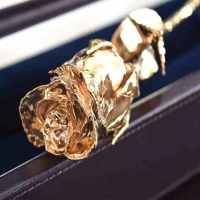 eternityrose-gold-rose